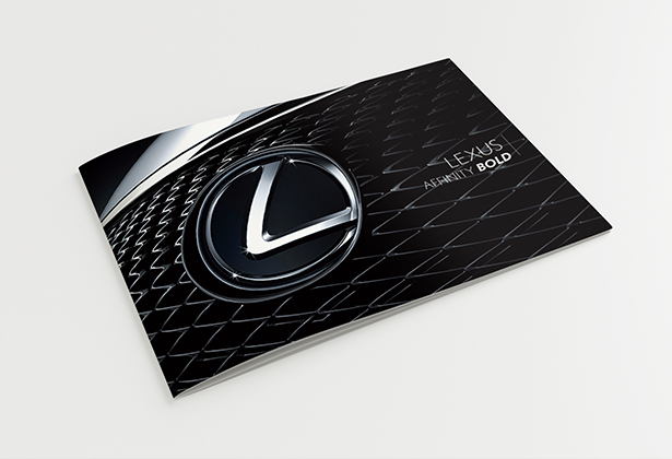 Lexus Warranty Booklet